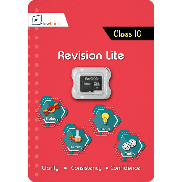 CBSE Revision Mate (Lite) SD Card For Class 10