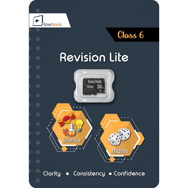 CBSE Revision Mate (Lite) SD Card For Class 6