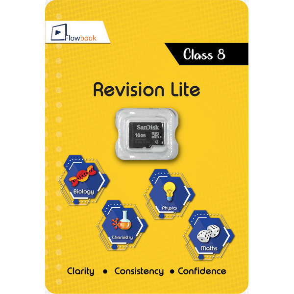 CBSE Revision Lite For Class8